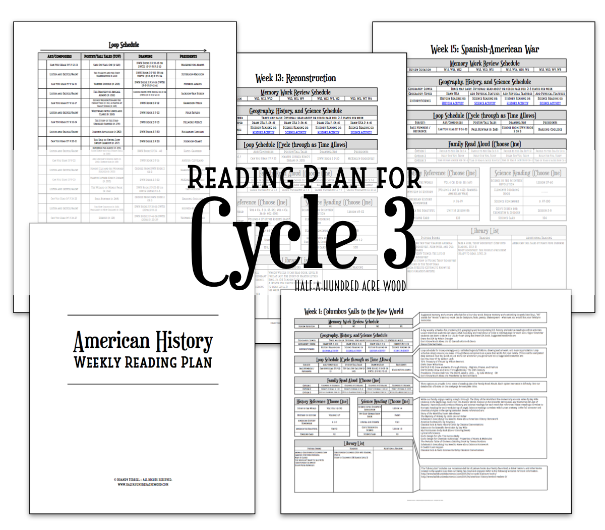 cycle-3-reading-plan