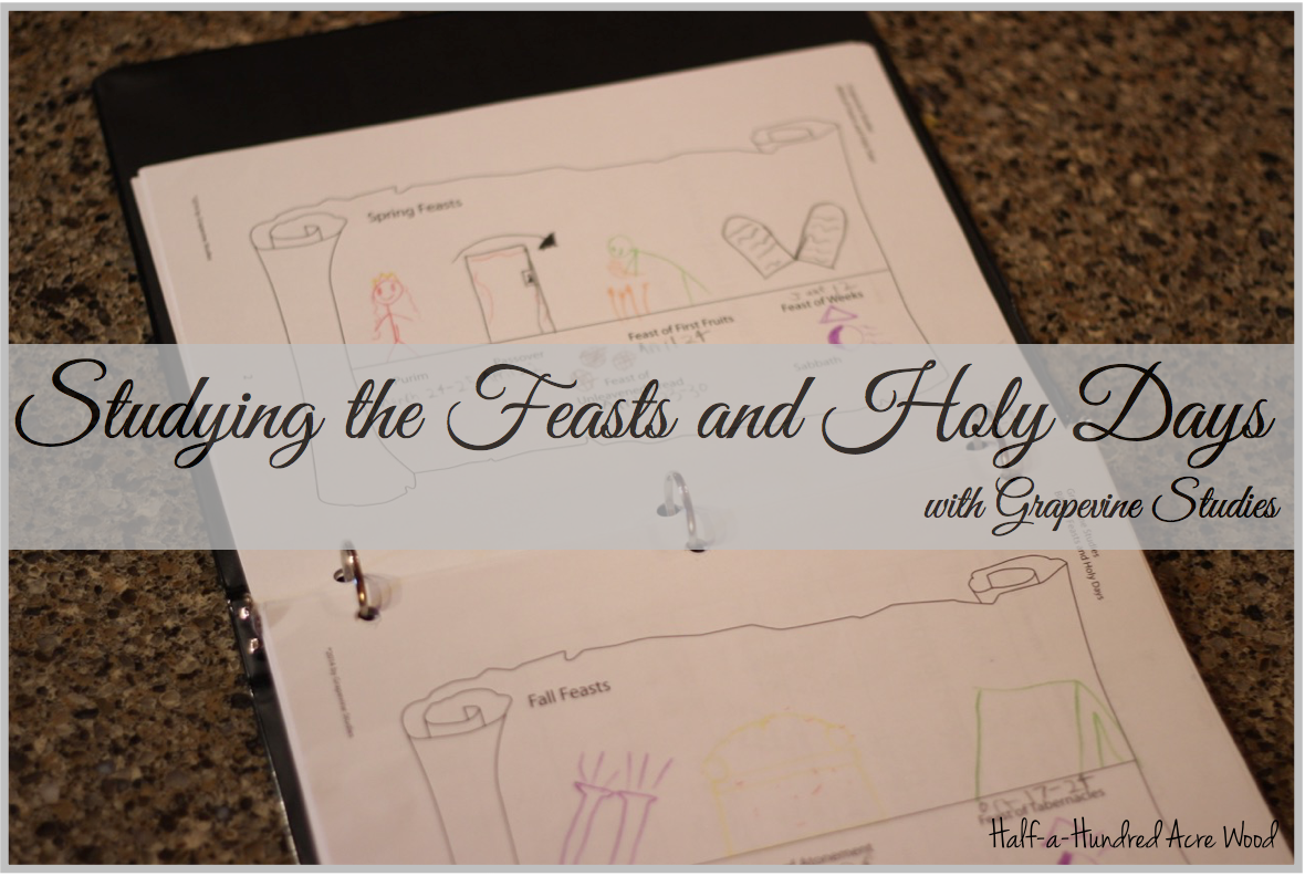 Studying the Biblical Feasts and Holy Days : Half a Hundred