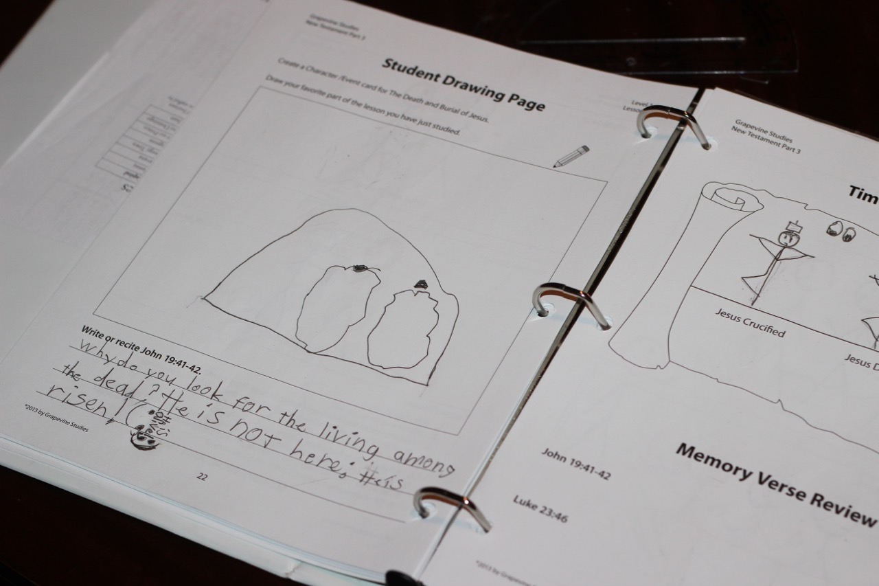 Math Curriculum Review - Half a Hundred Acre Wood