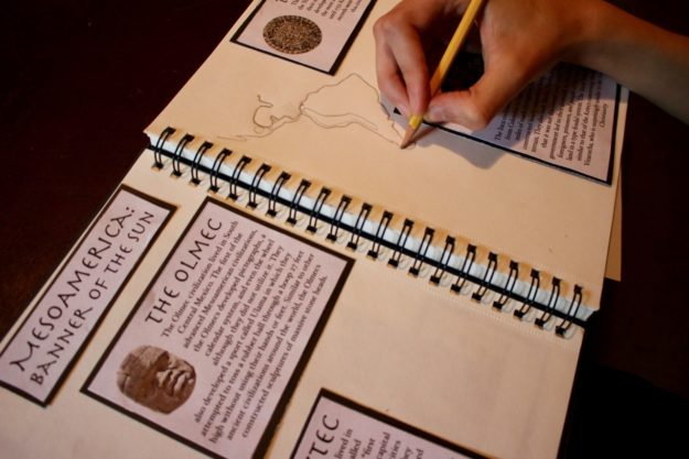 The Making of a History Portfolio : Half a Hundred Acre Wood